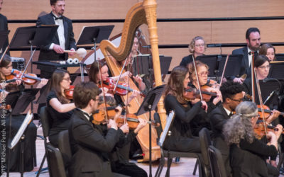Support the LSO by Sponsoring a Musician